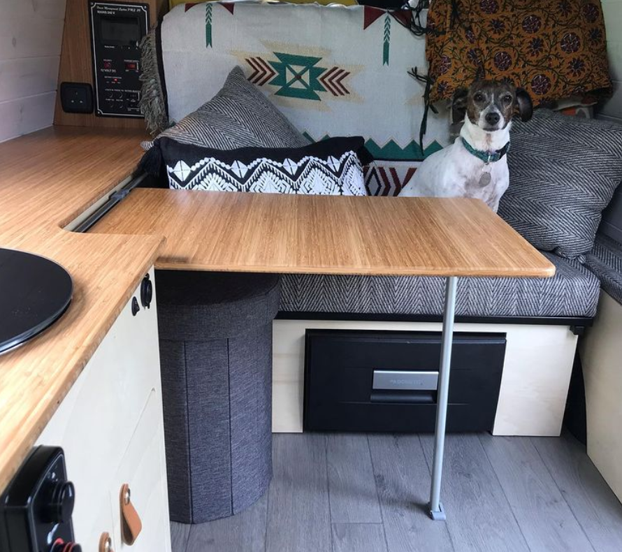 VW Caddy and dog